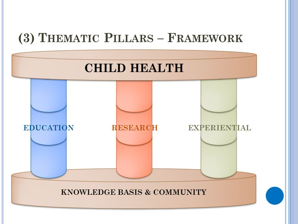 KNOWLEDGE BASIS & COMMUNITY (3) T HEMATIC P ILLARS – F RAMEWORK CHILD HEALTH EDUCATIONRESEARCHEXPERIENTIAL