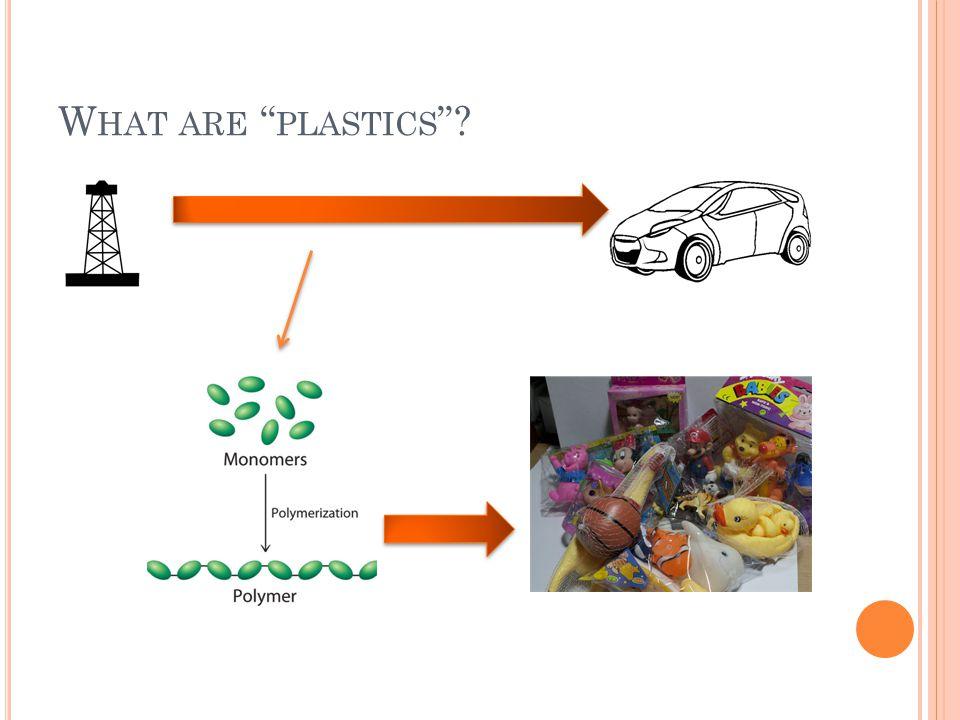 W HAT ARE PLASTICS