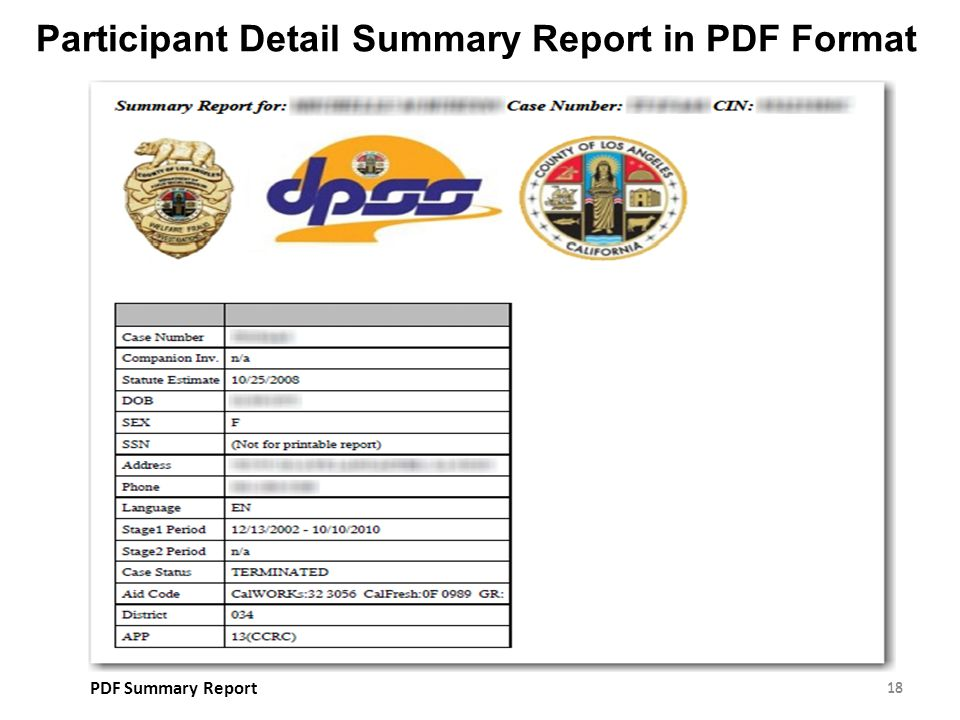 Participant Detail Summary Report in PDF Format 18 PDF Summary Report 18