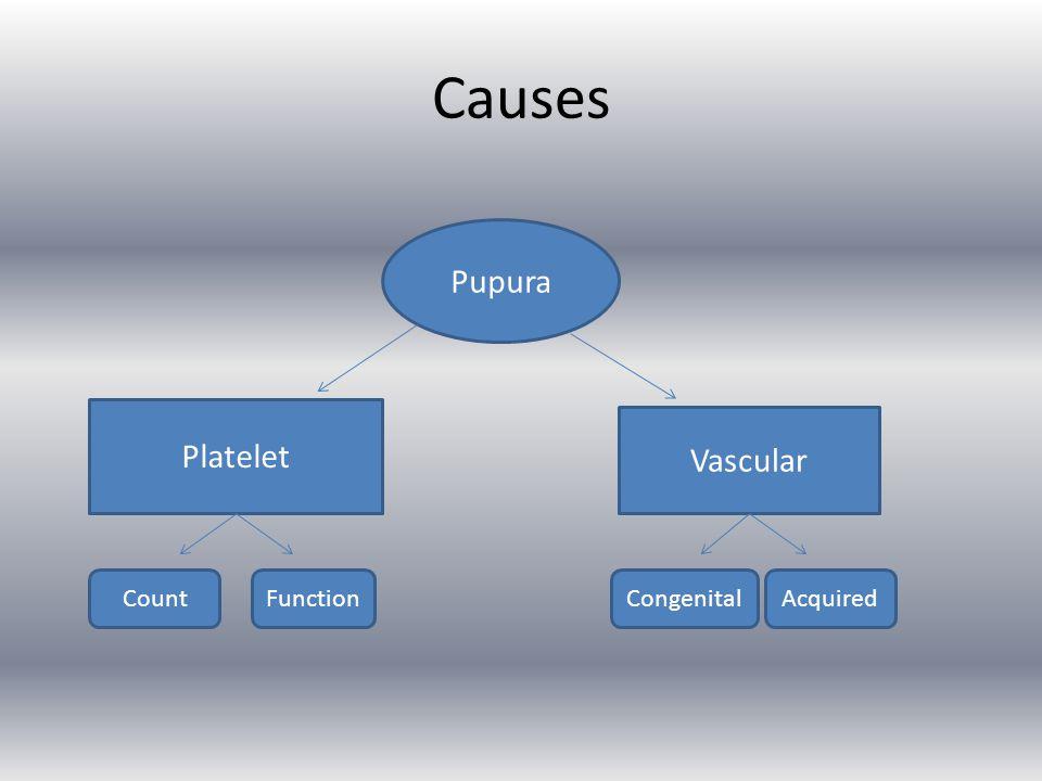 Causes Pupura Platelet Vascular FunctionCountCongenitalAcquired
