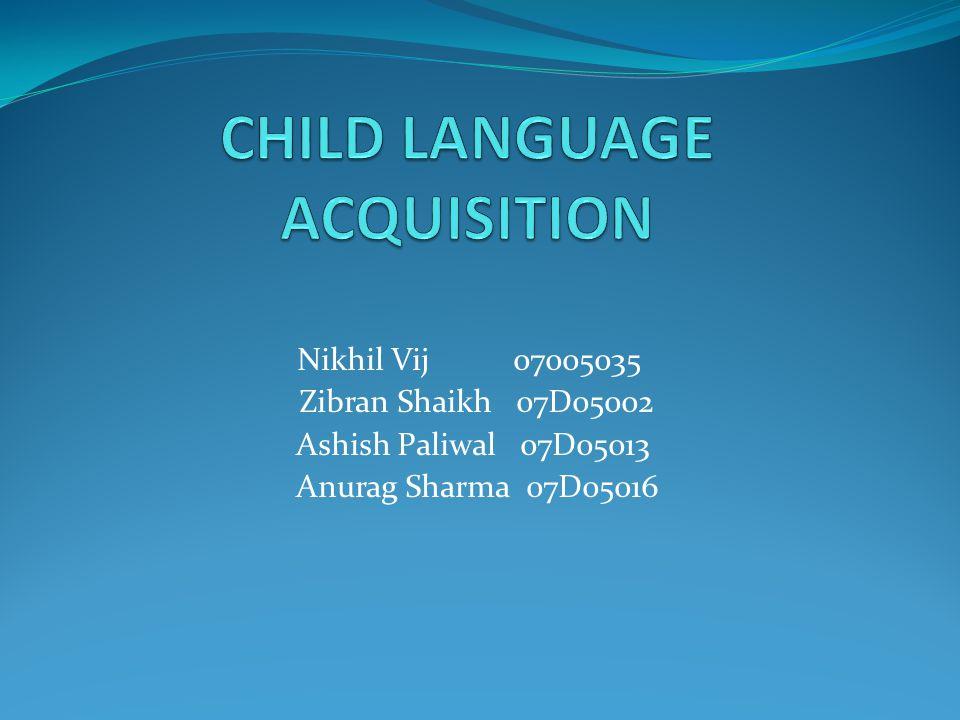 Nikhil Vij 07005035 Zibran Shaikh 07D05002 Ashish Paliwal 07D05013 Anurag Sharma 07D05016