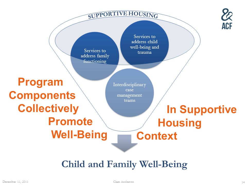 Child and Family Well-Being Interdisciplinary case management teams Services to address family functioning Services to address child well-being and tr