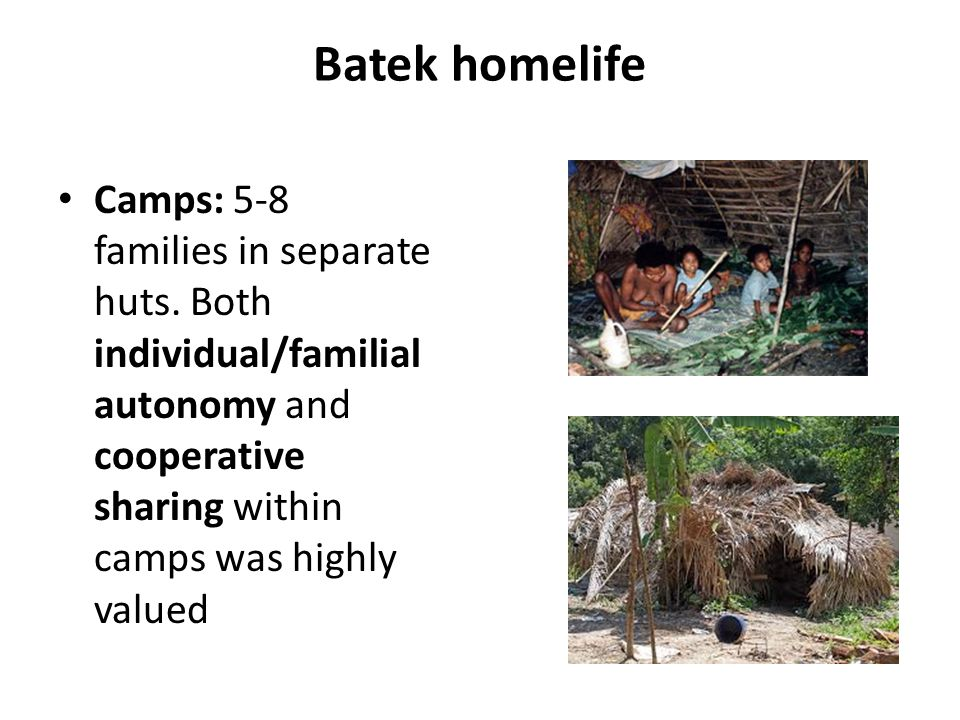 Batek homelife Camps: 5-8 families in separate huts.