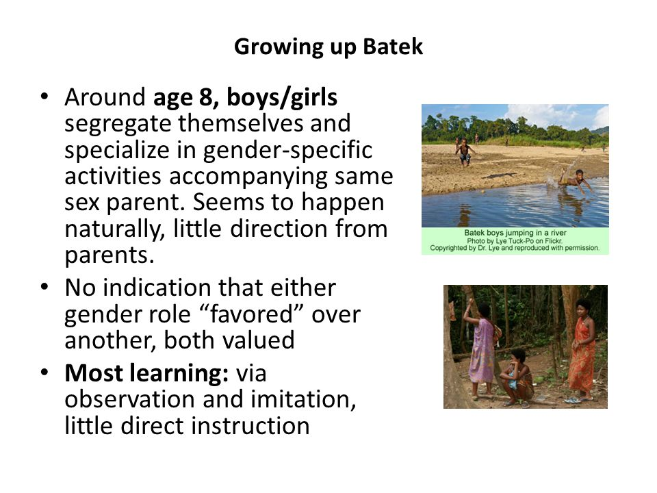 Growing up Batek Around age 8, boys/girls segregate themselves and specialize in gender-specific activities accompanying same sex parent.