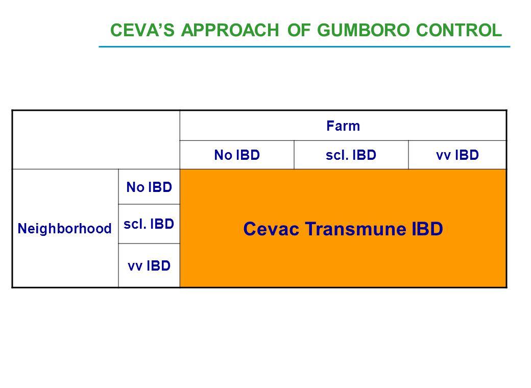 CEVA'S APPROACH OF GUMBORO CONTROL Farm No IBDscl. IBDvv IBD Neighborhood No IBD Cevac Transmune IBD scl. IBD vv IBD