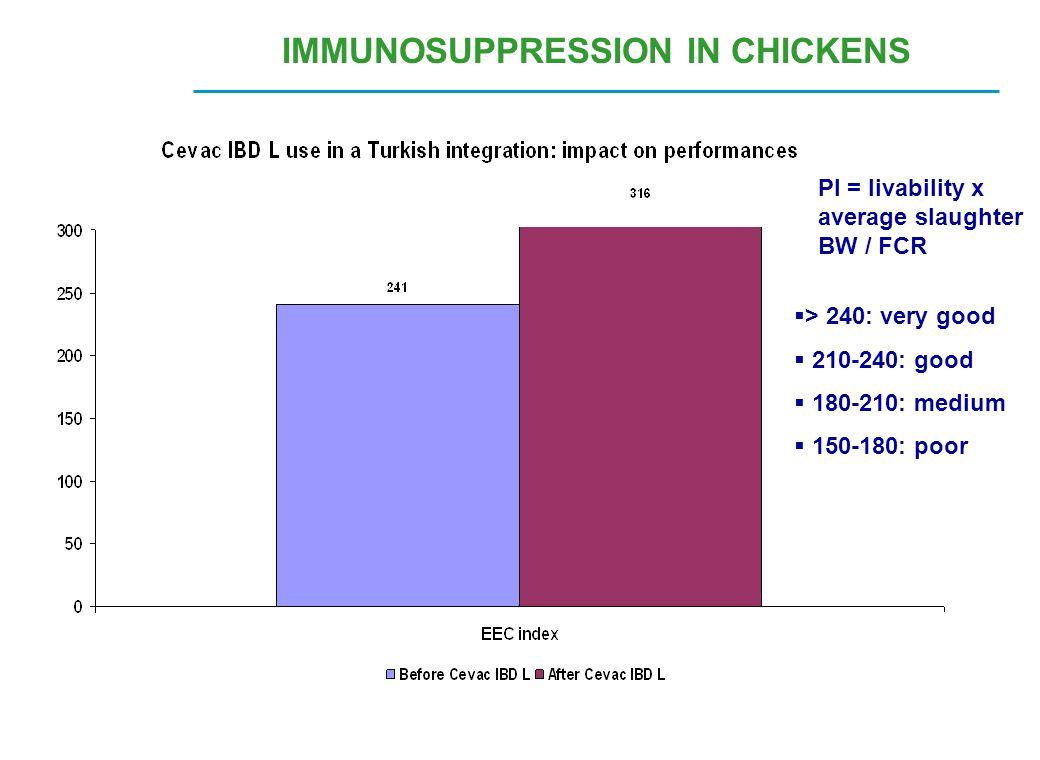 PI = livability x average slaughter BW / FCR  > 240: very good  210-240: good  180-210: medium  150-180: poor