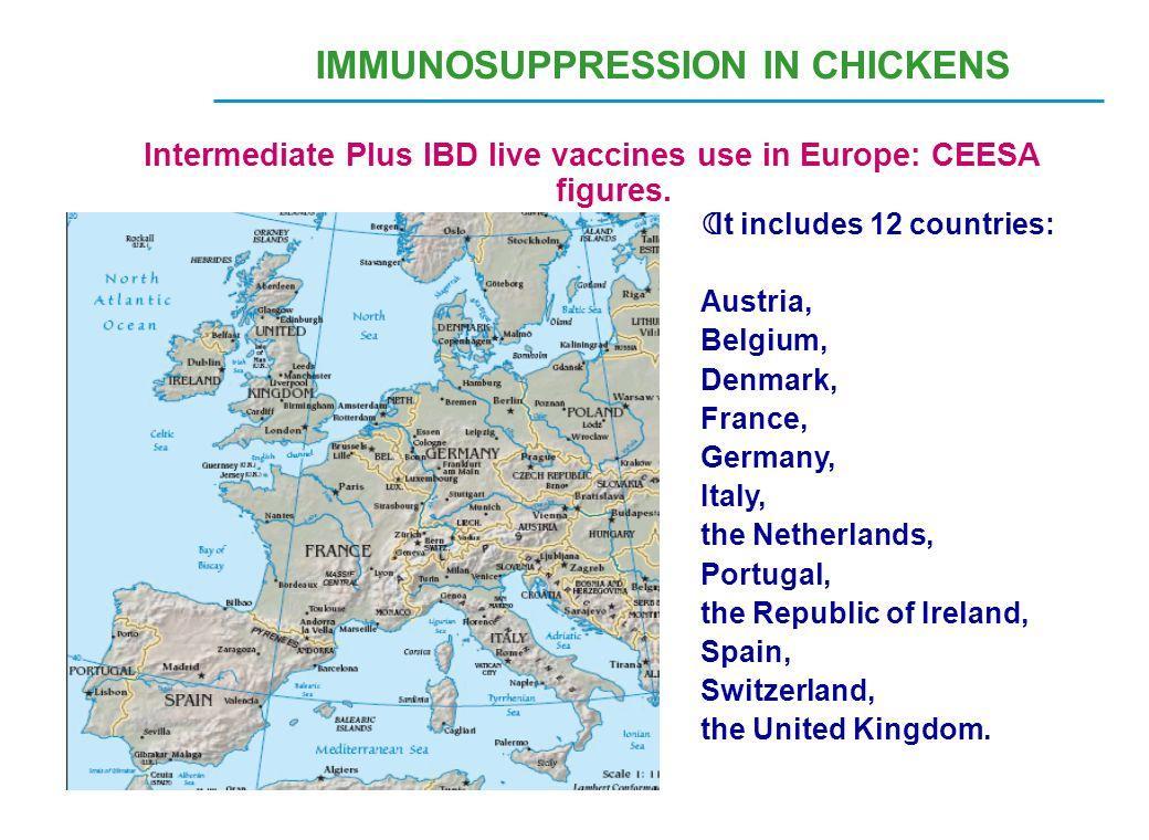 IMMUNOSUPPRESSION IN CHICKENS Intermediate Plus IBD live vaccines use in Europe: CEESA figures.  It includes 12 countries: Austria, Belgium, Denmark,