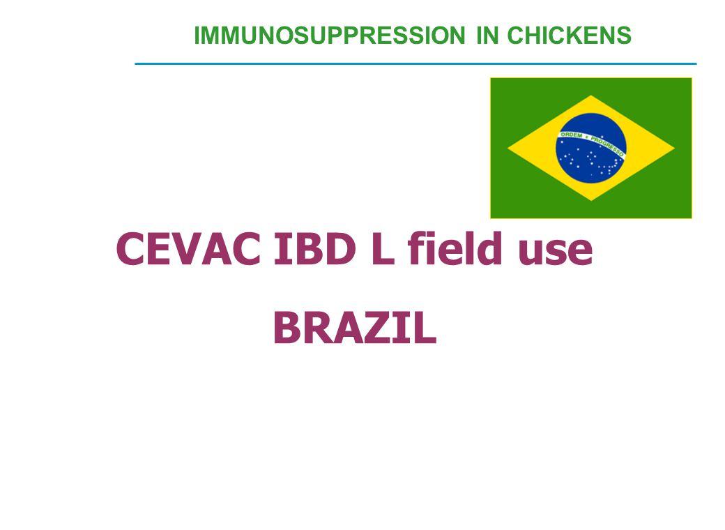 CEVAC IBD L field use BRAZIL IMMUNOSUPPRESSION IN CHICKENS