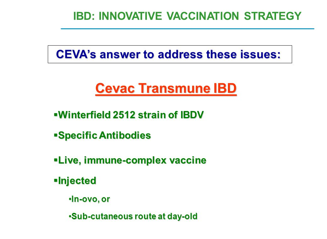 IBD: INNOVATIVE VACCINATION STRATEGY CEVA's answer to address these issues: Cevac Transmune IBD  Winterfield 2512 strain of IBDV  Specific Antibodie