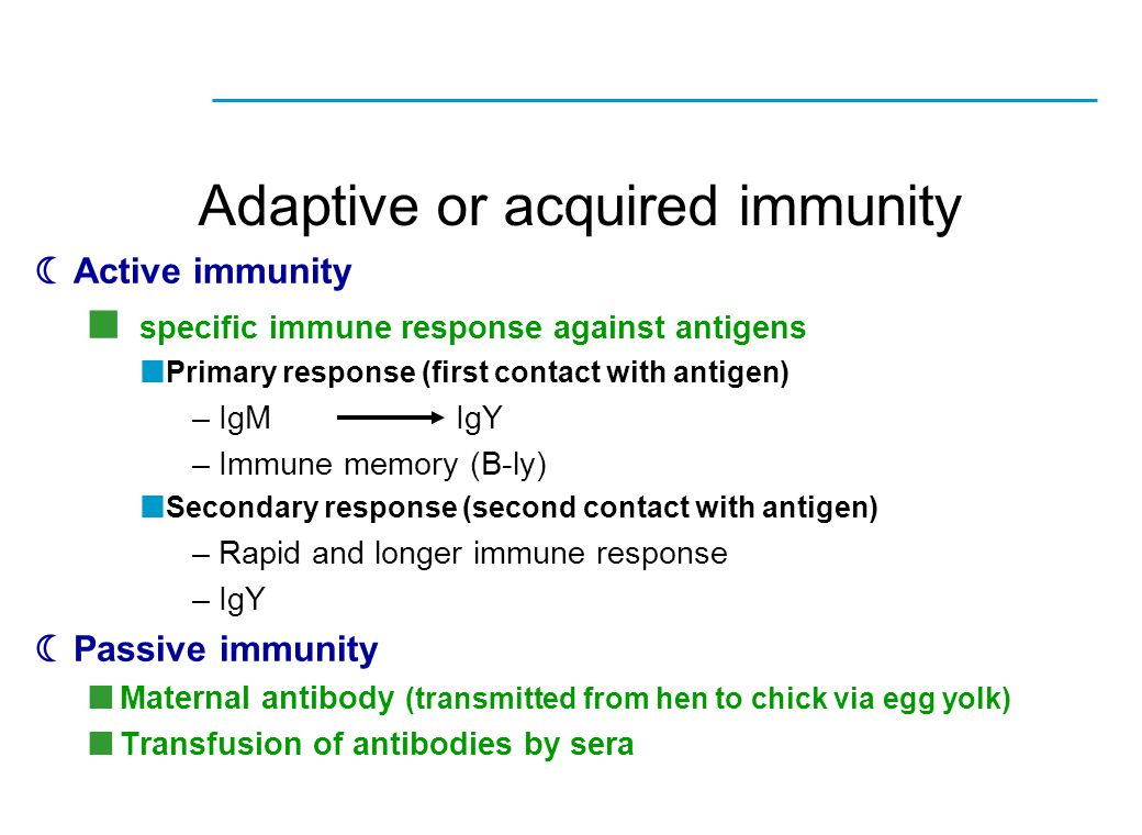  Active immunity specific immune response against antigens Primary response (first contact with antigen) –IgMIgY –Immune memory (B-ly) Secondary resp