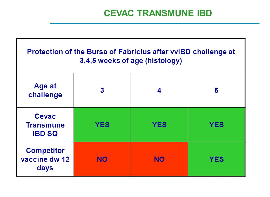 CEVAC TRANSMUNE IBD Protection of the Bursa of Fabricius after vvIBD challenge at 3,4,5 weeks of age (histology) Age at challenge 345 Cevac Transmune