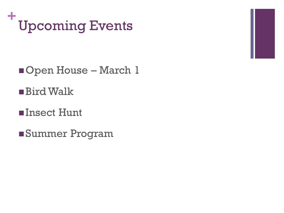 + Upcoming Events Open House – March 1 Bird Walk Insect Hunt Summer Program