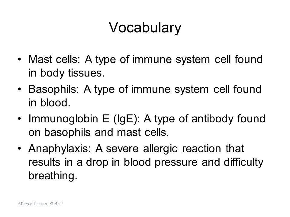 Vocabulary Mast cells: A type of immune system cell found in body tissues. Basophils: A type of immune system cell found in blood. Immunoglobin E (IgE