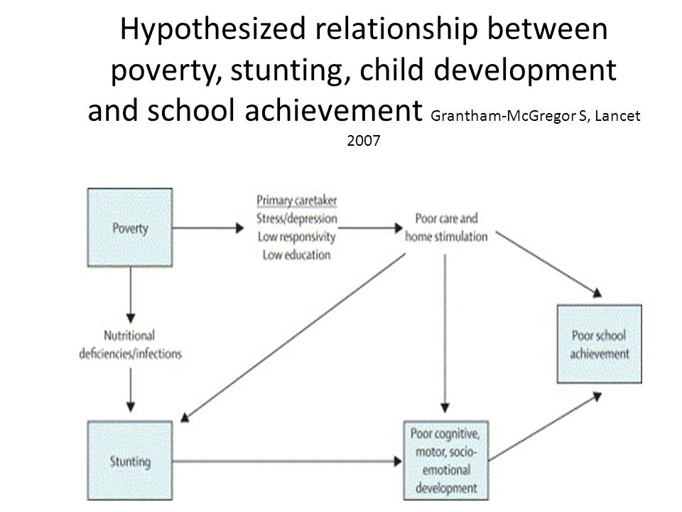 Hypothesized relationship between poverty, stunting, child development and school achievement Grantham-McGregor S, Lancet 2007 Download to PowerPointDownload to PowerPoint | Download all imagesDownload all images Figure 2