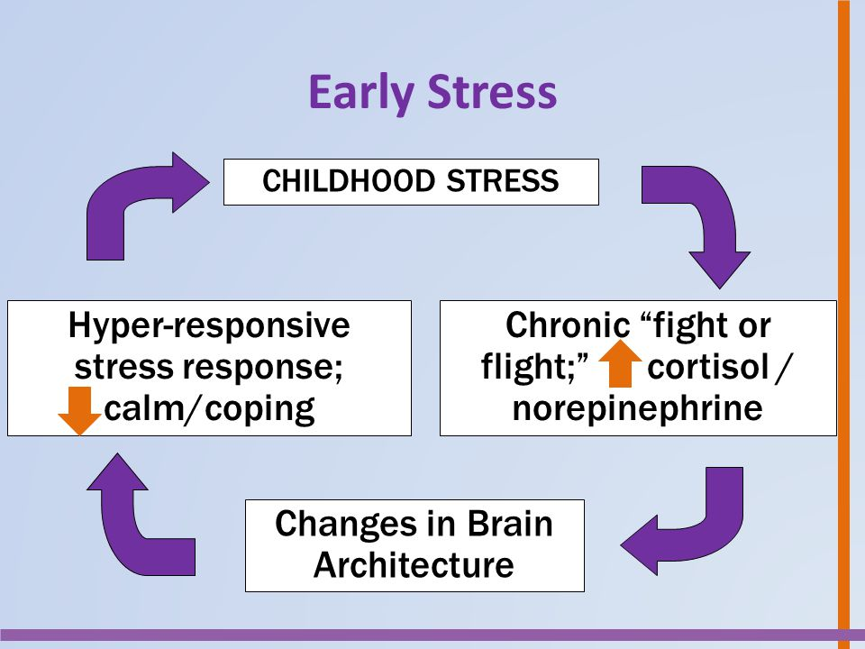 """TOXIC STRESS Chronic """"fight or flight;"""" cortisol / norepinephrine Changes in Brain Architecture Hyper-responsive stress response; calm/coping CHILDHOO"""