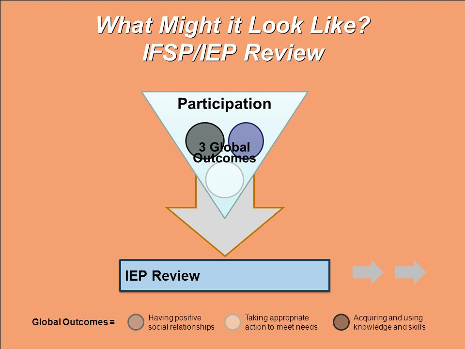 IEP Review What Might it Look Like.