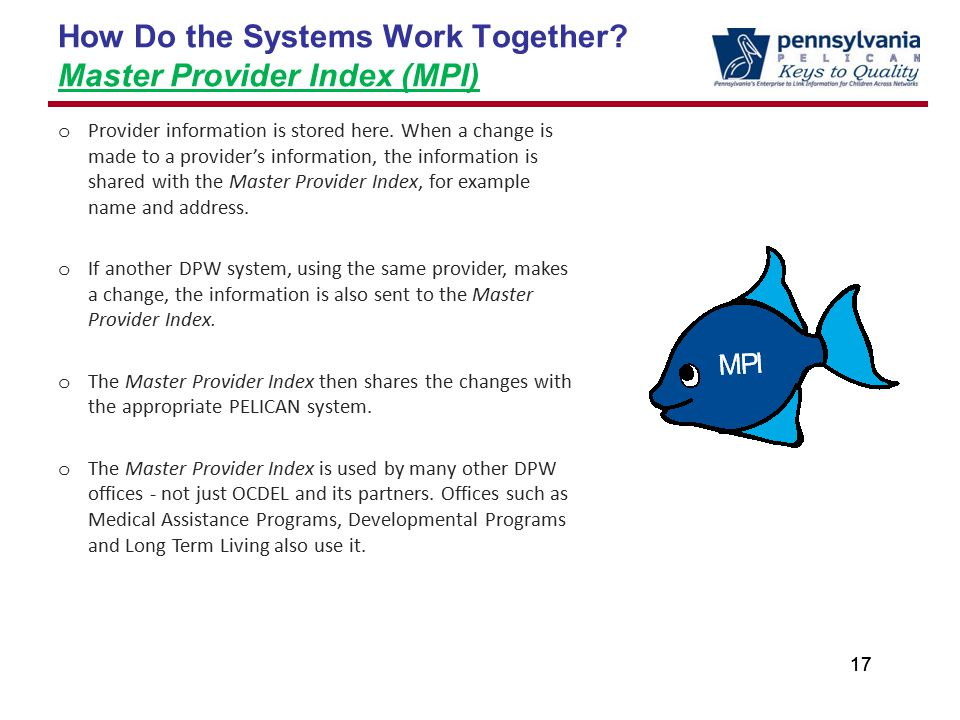 17 How Do the Systems Work Together.