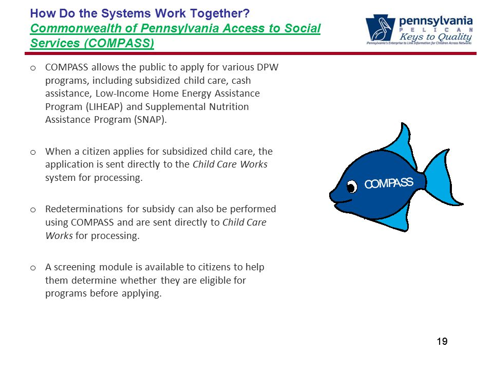 19 How Do the Systems Work Together.