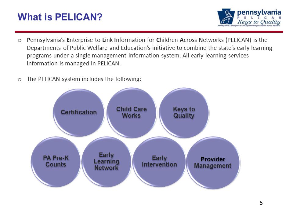 55 What is PELICAN.