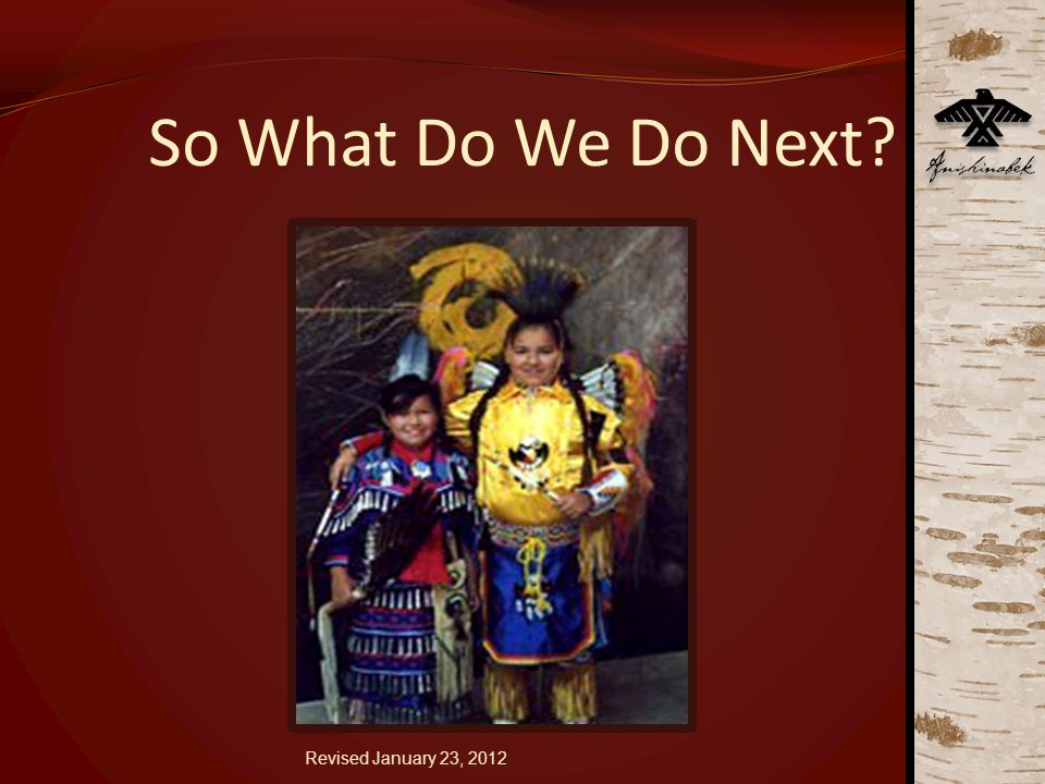 So What Do We Do Next Revised January 23, 2012