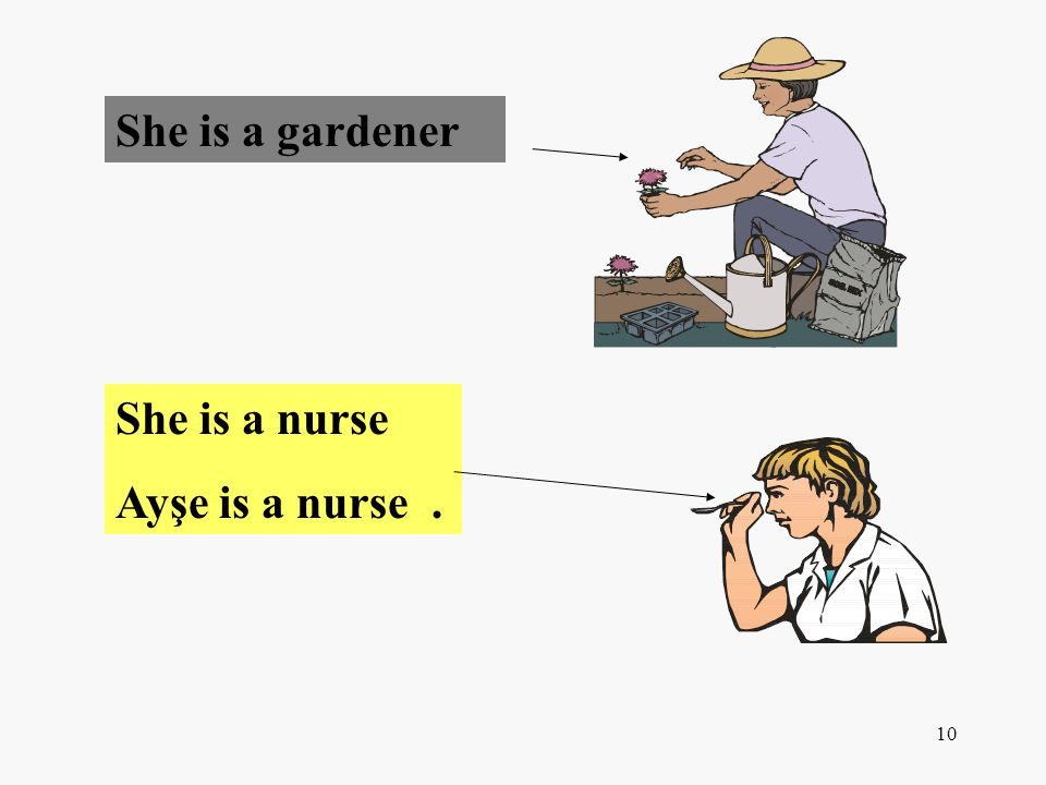 10 She is a gardener She is a nurse Ayşe is a nurse.