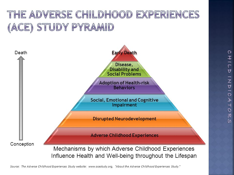 Conception Death Mechanisms by which Adverse Childhood Experiences Influence Health and Well-being throughout the Lifespan Source: The Adverse Childhood Experiences Study website: www.acestudy.org, About the Adverse Childhood Experiences Study.