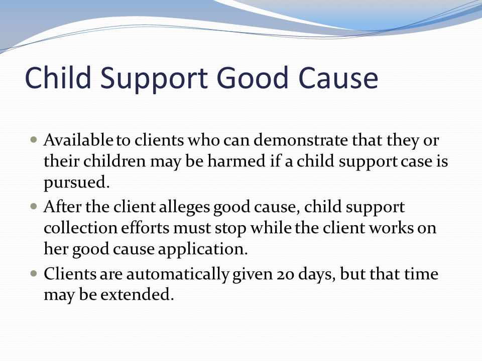 Child Support Good Cause Available to clients who can demonstrate that they or their children may be harmed if a child support case is pursued. After