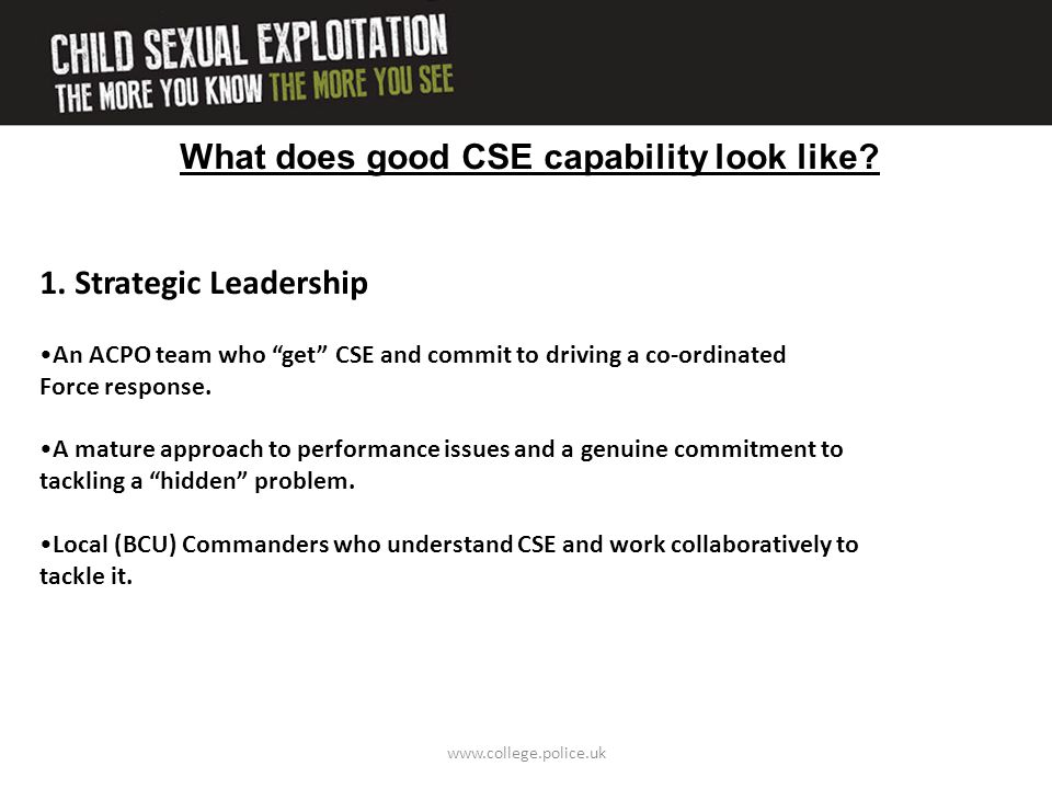 """What does good CSE capability look like? 1. Strategic Leadership An ACPO team who """"get"""" CSE and commit to driving a co-ordinated Force response. A mat"""