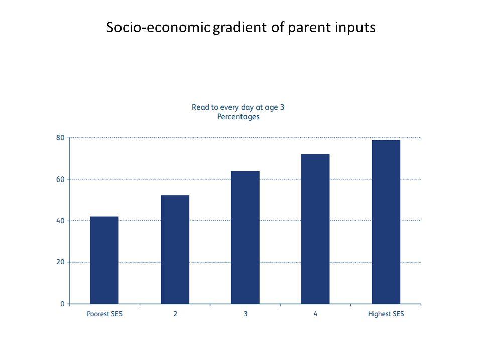 Socio-economic gradient of parent inputs