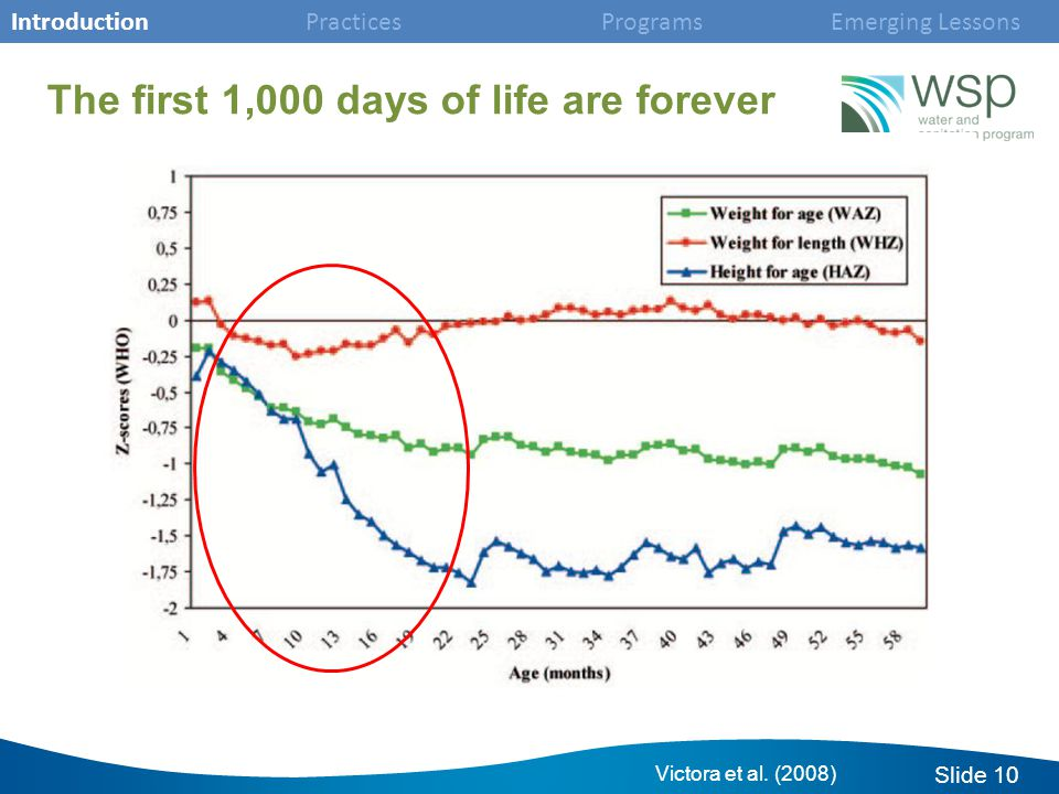 Slide 10 The first 1,000 days of life are forever Victora et al.