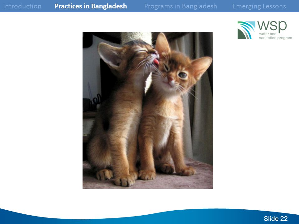 Slide 22 Introduction Practices in Bangladesh Programs in Bangladesh Emerging Lessons