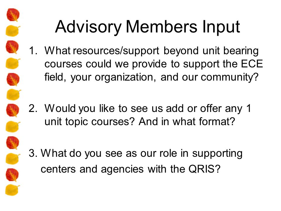 Advisory Members Input 1.What resources/support beyond unit bearing courses could we provide to support the ECE field, your organization, and our community.