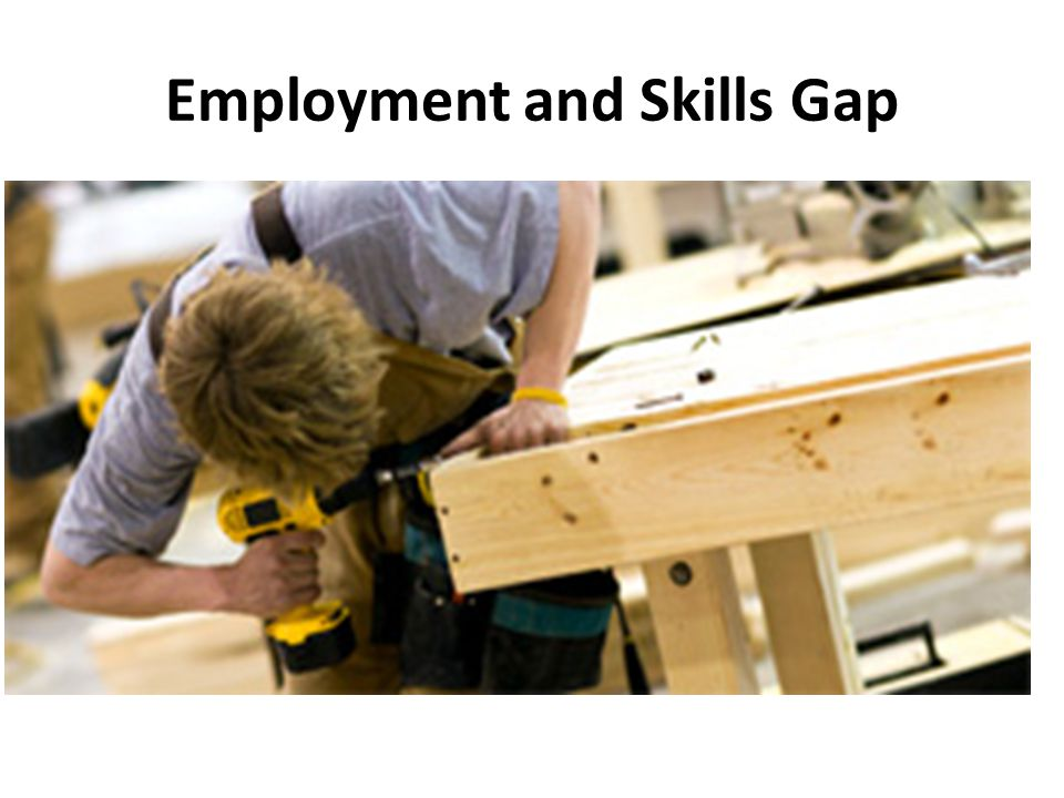 Employment and Skills Gap
