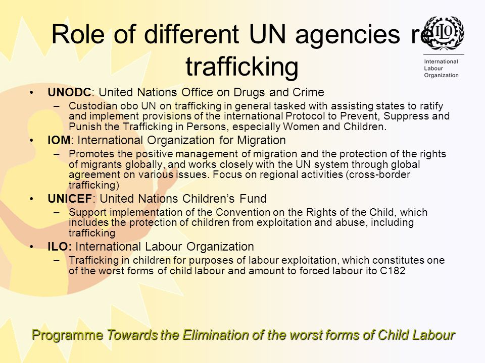 Programme Towards the Elimination of the worst forms of Child Labour Role of different UN agencies re trafficking UNODC: United Nations Office on Drug