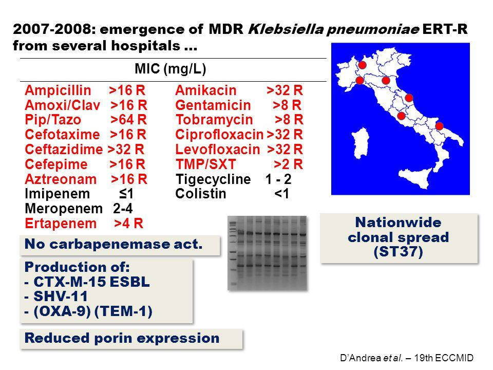Production of: - CTX-M-15 ESBL - SHV-11 - (OXA-9) (TEM-1) Production of: - CTX-M-15 ESBL - SHV-11 - (OXA-9) (TEM-1) D'Andrea et al. – 19th ECCMID 2007