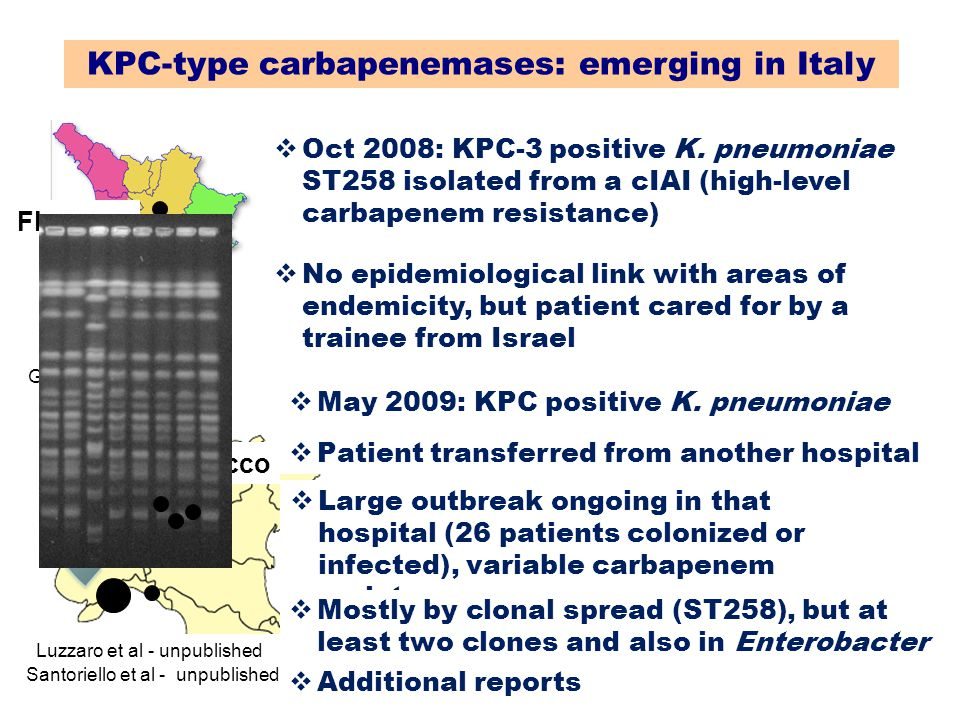 KPC-type carbapenemases: emerging in Italy Giani et al - JCM 2009 Florence  Oct 2008: KPC-3 positive K. pneumoniae ST258 isolated from a cIAI (high-l