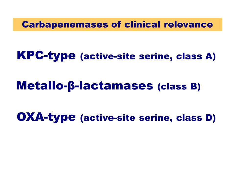 KPC-type (active-site serine, class A) OXA-type (active-site serine, class D) Metallo-β-lactamases (class B) Carbapenemases of clinical relevance