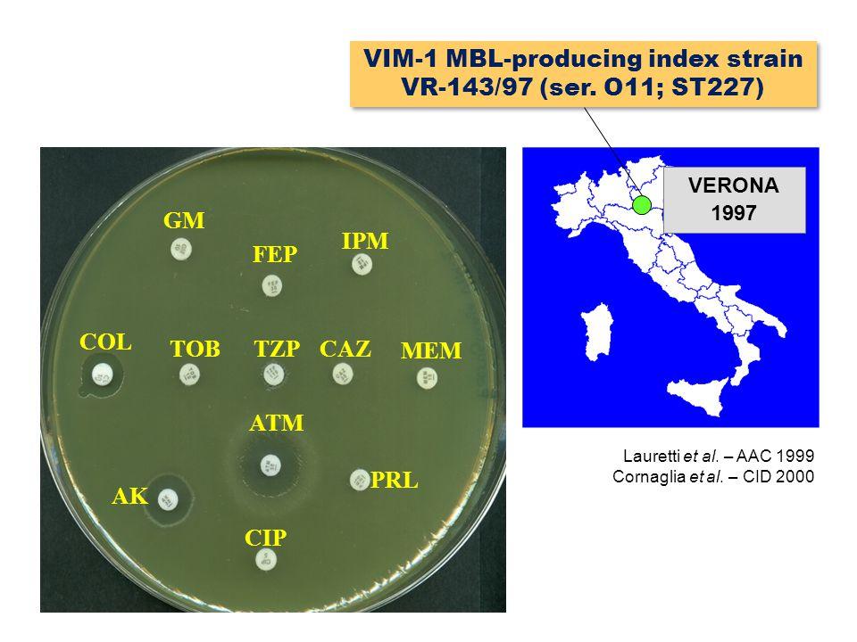 GM COL AK TOB FEP IPM MEM CAZTZP ATM CIP PRL Lauretti et al. – AAC 1999 Cornaglia et al. – CID 2000 VERONA 1997 VIM-1 MBL-producing index strain VR-14