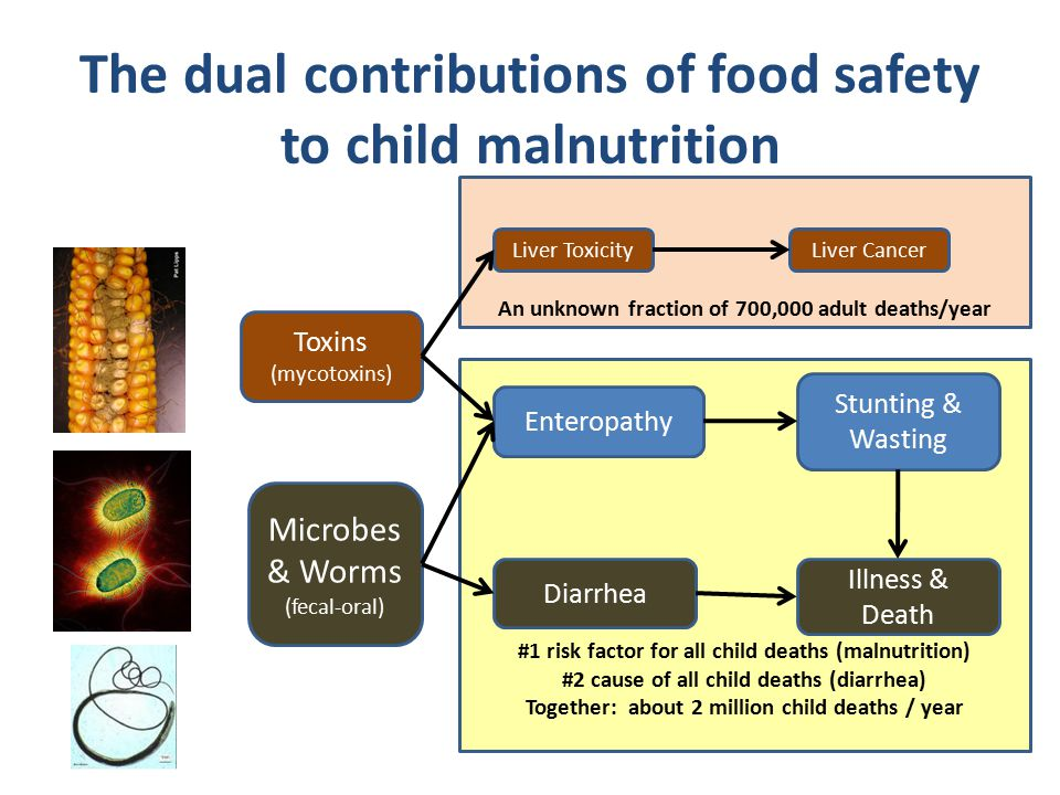 An unknown fraction of 700,000 adult deaths/year #1 risk factor for all child deaths (malnutrition) #2 cause of all child deaths (diarrhea) Together: