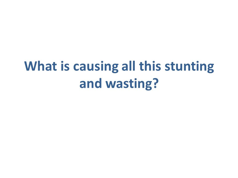 What is causing all this stunting and wasting?