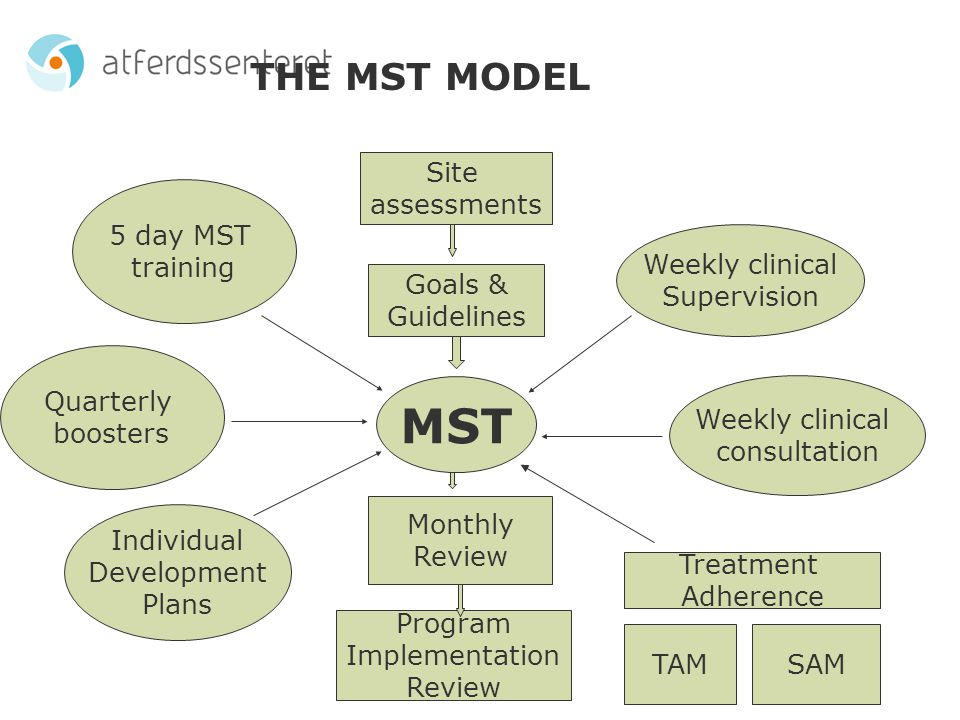 Implementation of the MST treatment model in Norway has required a persistent multi-level effort: Legal adaptation Organizational factors – nationwide and regionally Attitudes towards treatment and therapist role Development, consolidation and maintenance of an MST organization in Norway Development of the Norwegian adaptation of the Quality Assurance System