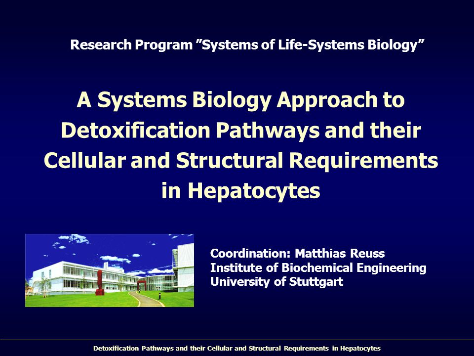 Detoxification Pathways and their Cellular and Structural Requirements in Hepatocytes Research Program Systems of Life-Systems Biology A Systems Biology Approach to Detoxification Pathways and their Cellular and Structural Requirements in Hepatocytes Coordination: Matthias Reuss Institute of Biochemical Engineering University of Stuttgart