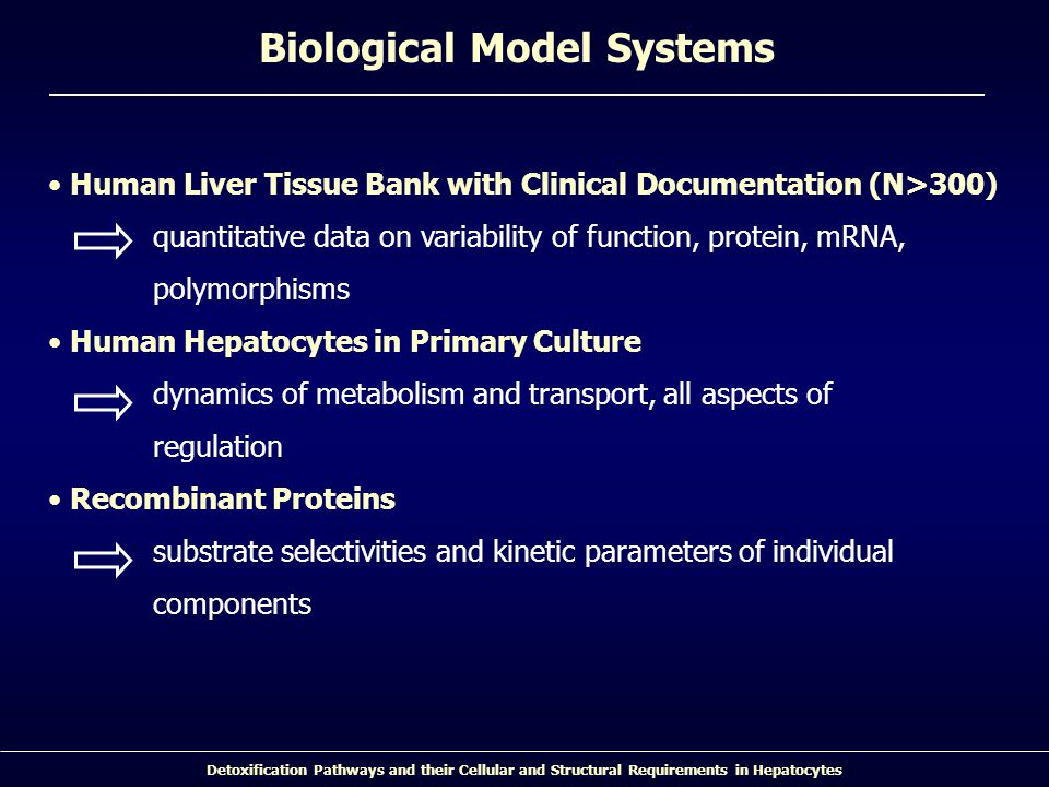 Detoxification Pathways and their Cellular and Structural Requirements in Hepatocytes Biological Model Systems Human Liver Tissue Bank with Clinical D