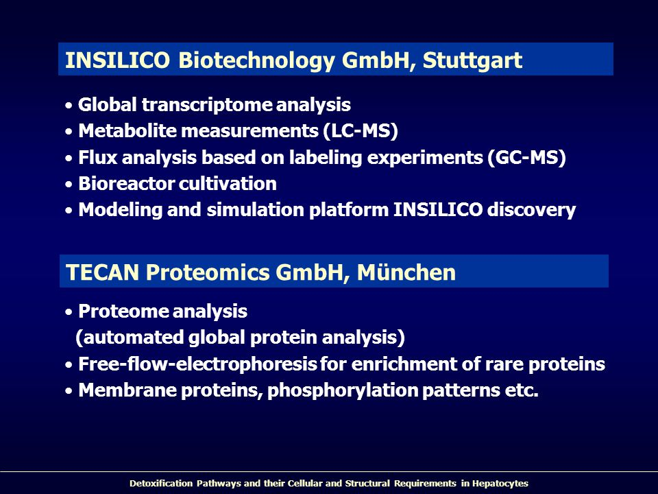 Detoxification Pathways and their Cellular and Structural Requirements in Hepatocytes Global transcriptome analysis Metabolite measurements (LC-MS) Flux analysis based on labeling experiments (GC-MS) Bioreactor cultivation Modeling and simulation platform INSILICO discovery INSILICO Biotechnology GmbH, Stuttgart Proteome analysis (automated global protein analysis) Free-flow-electrophoresis for enrichment of rare proteins Membrane proteins, phosphorylation patterns etc.
