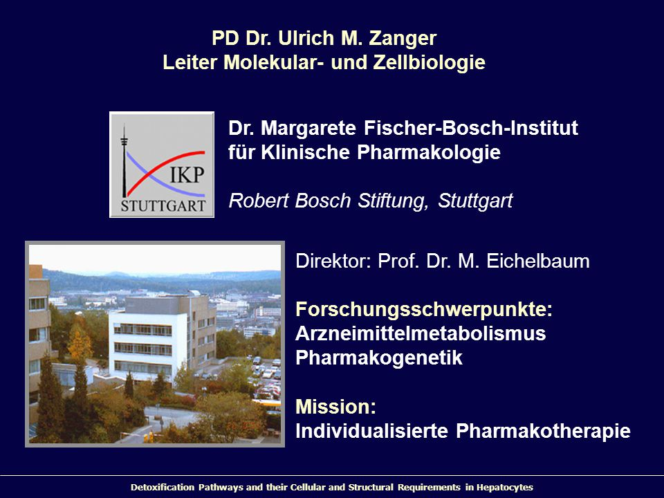 Detoxification Pathways and their Cellular and Structural Requirements in Hepatocytes Direktor: Prof. Dr. M. Eichelbaum Forschungsschwerpunkte: Arznei