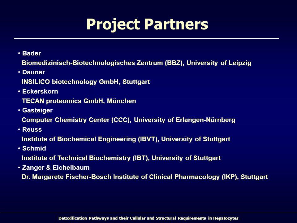 Detoxification Pathways and their Cellular and Structural Requirements in Hepatocytes Bader Biomedizinisch-Biotechnologisches Zentrum (BBZ), Universit