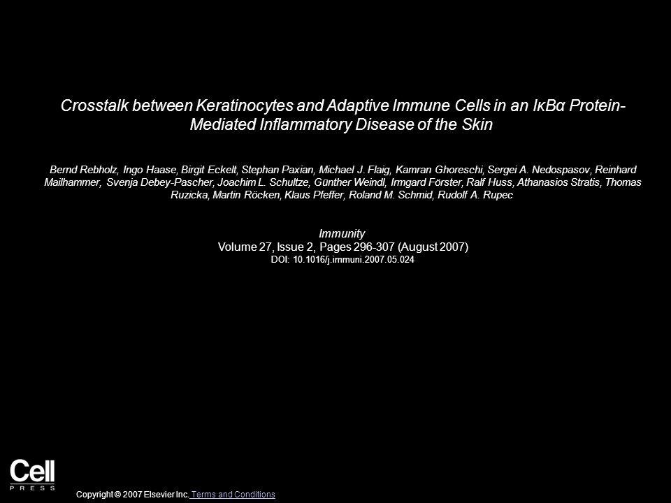 Crosstalk between Keratinocytes and Adaptive Immune Cells in an IκBα Protein- Mediated Inflammatory Disease of the Skin Bernd Rebholz, Ingo Haase, Birgit Eckelt, Stephan Paxian, Michael J.