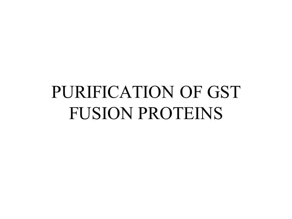 PURIFICATION OF GST FUSION PROTEINS