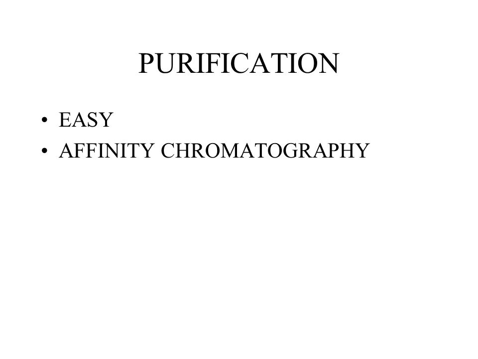 PURIFICATION EASY AFFINITY CHROMATOGRAPHY