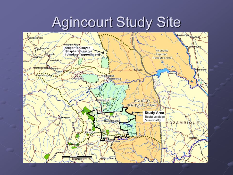 Agincourt Study Site